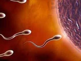 5个坏习惯会伤害精子质量!看看你中招了没